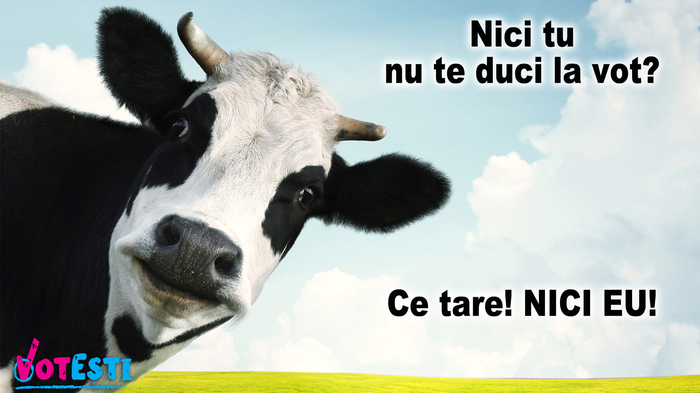 Nu vota că-ți spune vaca. Că nu ești bou. 3
