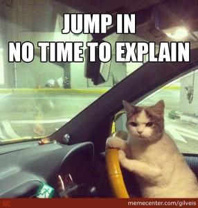 cat-iz-taxi-driver_o_2486639