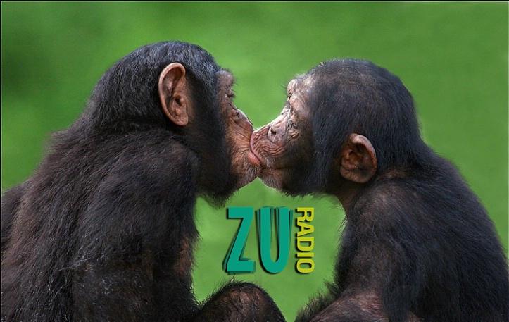 Tu accepți căsătoria dintre Buzdugan și Morar? 3