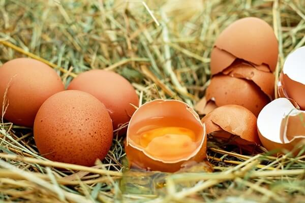 Într-o țară fără coaie e normal să fie scump oul 7