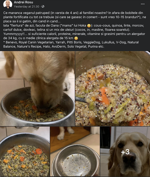 Câini vegani și antropomorfizări 1